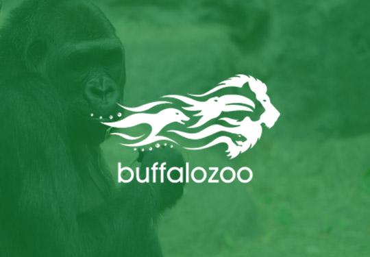 Buffalo Zoo InVue Digital